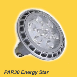 PAR30 LED replacement lamp